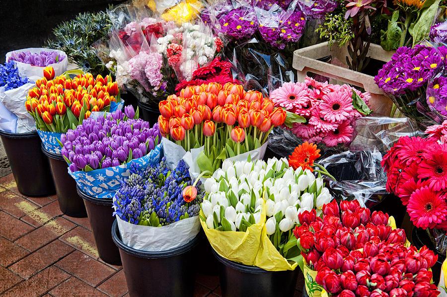 colorful-flower-market-cheryl-davis
